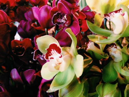 Penny Blooms&Beans'de çiçek tasarım atölyesi