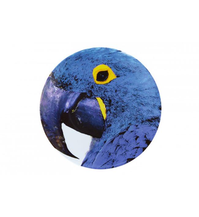 assiette-olhar-o-brasil-perroquet-bleu