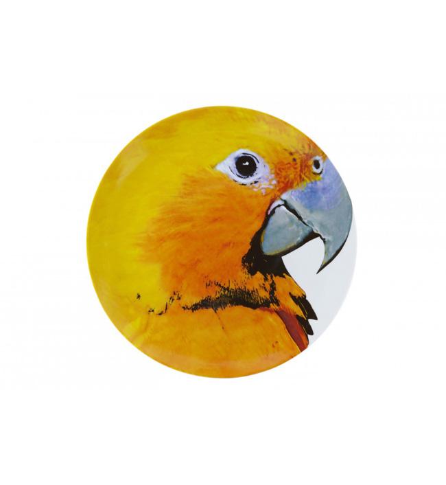 assiette-olhar-o-brasil-perroquet-jaune-