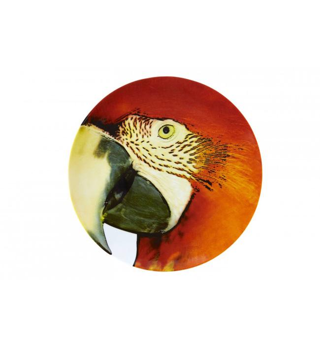 assiette-olhar-o-brasil-perroquet-rouge