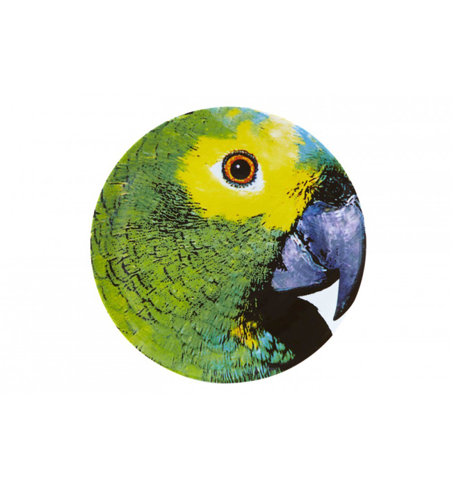assiette-olhar-o-brasil-perroquet-vert