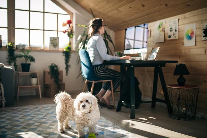 Doğru çalışma odası için beş tavsiye